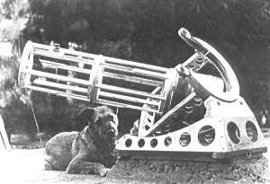 Bailey telescope with dog